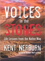 Voices in the Stones cover